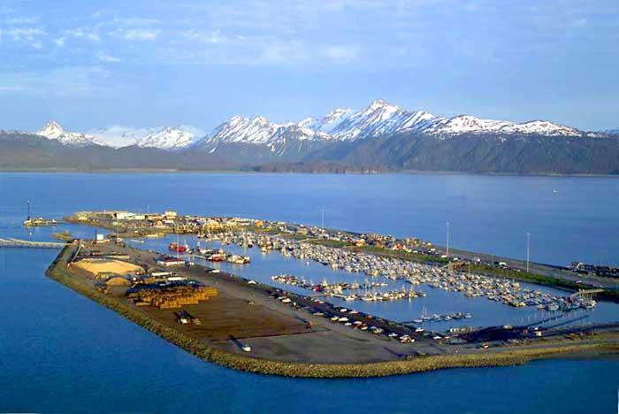 Most used fishing row boat mi je for Halibut fishing homer alaska